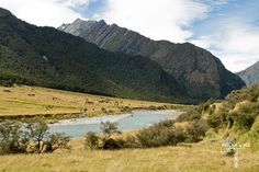 Mountains and river in Matukituki Valley, Mt Aspiring Hut, New Zealand. Amazing place to stay for a night.