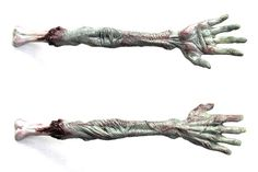 Zombie Back Scratcher - Back scratcher shaped like the undead Zombie hand. Exquisite level of gory details. Material: tough urethane resin. Unique: no two are exactly alike - paint details may vary as these are hand painted. $29.95.