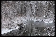 Spring Snow_9652
