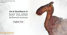 Stunning Museums in Kerala #driftwood #sculpture #museum  https://www.bayislandmuseum.com/places-to-visit-in-kumarakom.html