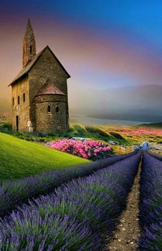 Scenery – Miracles from Nature Amazing Photography, Landscape Photography, Nature Photography, Scenic Photography, Beautiful World, Beautiful Images, Beautiful Things, Valensole, Image Nature