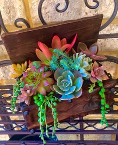 Life is like a box of succulents. Arrangement and photo by Belinda Jane Seery