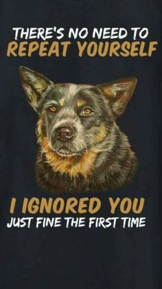 Says every stubborn cattle dog!