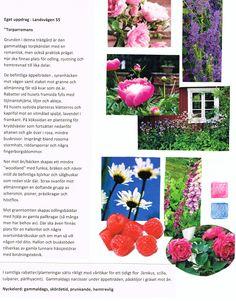 Britta Enander, www.swegd.com Garden Design, Frame, Projects, Home Decor, Log Projects, Homemade Home Decor, Decoration Home, Room Decor, Backyard Landscape Design