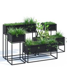 model Kronos planters asparagus bush chlorophytum formats MAX OBJ FBX MAT ready for animation and other projects House Plants Decor, Plant Decor, Indoor Garden, Indoor Plants, Chlorophytum, Plant Box, Plant Stands, Flower Stands, Interior Plants