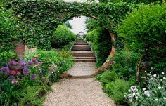 pictures of gorgeous gardens | My top items: