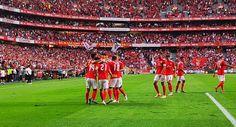 Soccer, Sports, Club, Birds, Life, Hs Sports, Futbol, Sport, European Football