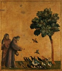 San Francesco predica agli uccelli giotto analisi