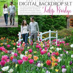 Digital Props 16x20 Backdrop Set - Tulip Bridge