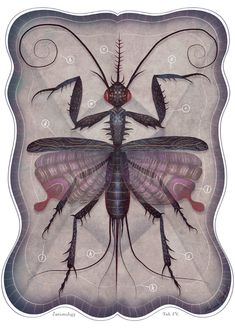 Entomology Tab. IV  A4 art print by vladimirsart