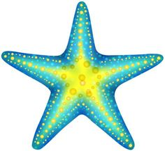 Blue Starfish PNG Clip Art in category Summer PNG / Clipart - Transparent PNG pictures and vector rasterized Clip art images. Starfish Drawing, Starfish Painting, Starfish Art, Dot Painting, Starfish Tattoos, Art Pictures, Art Images, Starfish Clipart, The Little Mermaid