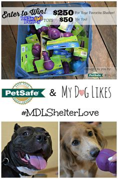 Enter to win $250 of @petsafe Busy Buddy toys for your favorite shelter and $50 for yourself! @MyDogLikes ' biggest giveaway yet!