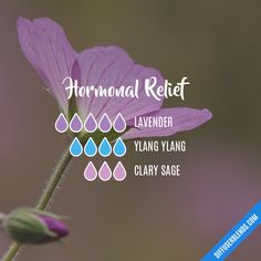 Hormonal Relief — Essential Oil Diffuser Blend