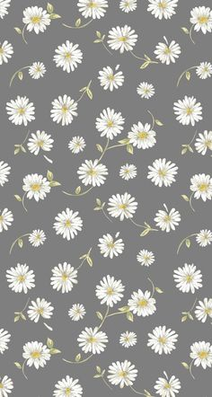 Wallpaper Nette Blumentapete - # süß Choosing A Shower Enclosure Article Body: One of Daisy Wallpaper, Iphone Wallpaper Vsco, Flower Phone Wallpaper, Cute Patterns Wallpaper, Homescreen Wallpaper, Iphone Background Wallpaper, Aesthetic Pastel Wallpaper, Trendy Wallpaper, Cartoon Wallpaper
