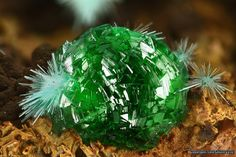Agardite with intensive green adamite (FOV:4mm) from Hilarion Mine (Kamariza; Lavrio; GR). Photo: Vasilis Stergiou