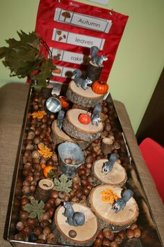 My person squirrel themed sensory bin. It is filled with acorns, stumps, buckets, felt leaves and squirrels