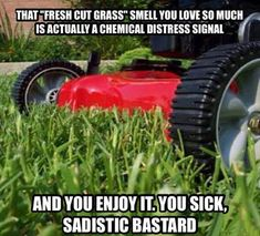 There's Nothing Like The Smell Of A Freshly Cut Lawn