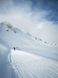 Alta, Utah  #ski #alta #utah