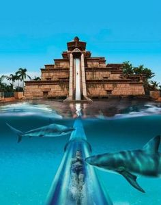 Tower of Power, Siam Park, Tenerife.