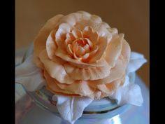пион вариан 2. насадкой роза -104 и насадкой 81-хризантема.cream peony - YouTube