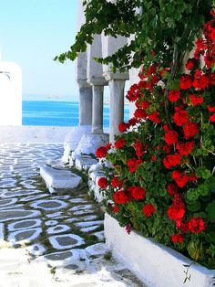 Side view of Agios Kostantinos church with arches, paved alley and red flowers overlooking the sea. Parikia, Paros island, Cyclades, Greece