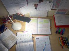 I should be studying... : Photo