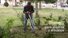 Herramienta de jardinería  para eliminar malas hierbas y plantas de raíz New York, Youtube, Barbacoa, Delaware, Blog, Ideas, Garden Tools, Growing Plants, Herbs