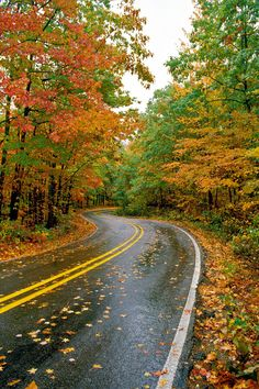 State-by-State Guide to the Best Fall Color: Talimena Scenic Highway 88 Fall Color