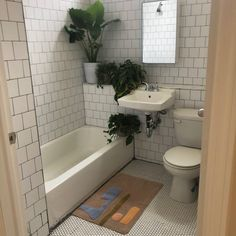 #BathroomDecorSets White Bathroom Decor, Boho Bathroom, Bathroom Layout, Simple Bathroom, Bathroom Interior Design, Bathroom Sets, Earthy Bathroom, Bathroom No Window, Plants In Bathroom