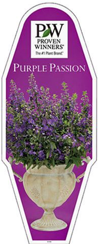 Recipes for creating your favorite PURPLE container combinations