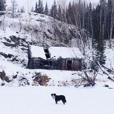 abandoned cabin // via seek + scout