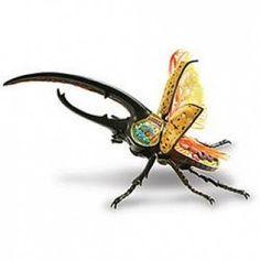 Hercules Beetle Anatomic Model Puzzle - Have KV Bug Toys, Beetle Bug, Science For Kids, Hercules, Hulk, 3 D, Puzzle, Model, Beetles