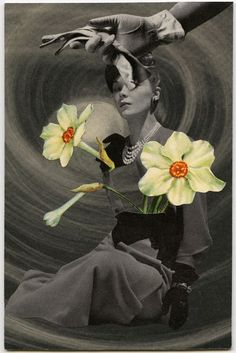 Narcissus, 2010, collage by Angelica Paez.