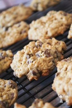 These are my favorite cookies in the whole world! Years ago, I went through so many recipes looking for the perfect chocolate chip cookie and as soon as I tried these my search was over. Trust me w… Oatmeal Chocolate Chip Cookie Recipe, Oatmeal Cookies, Chocolate Chips, Chocolate Oatmeal, Oatmeal Bars, Sugar Cookies, Cookies Soft, Sprinkle Cookies, Salted Chocolate