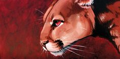 Montana (Mountain Lion), an art print by Peyton Aufill Mountain Lion, Predator, Big Cats, Bouldering, All Art, Montana, Art Prints, Canvas, Acrylics