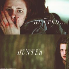 This picture perfectly illustrates the character arc of Bella, the female protagonist of the Twilight saga. In the beginning, she was always scared and a target but by the end of the series, she has fully adjusted and has in fact been the one to hunt. Twilight Saga Quotes, Twilight Jokes, Twilight Saga Series, Twilight Edward, Twilight New Moon, Twilight Pictures, Twilight Series, Twilight Movie, Edward Bella