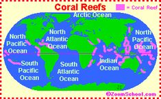 Google Image Result for http://www.enchantedlearning.com/cgifs/Coralreefmap.GIF