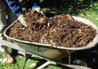 How to Turn Fallen Leaves into Organic Mulch l Better Homes and Gardens. Prepare for Winter! Organic Mulch, Organic Gardening, Gardening Tips, Vegetable Gardening, Garden Compost, Garden Soil, Garden Care, Autumn Garden, Better Homes And Gardens