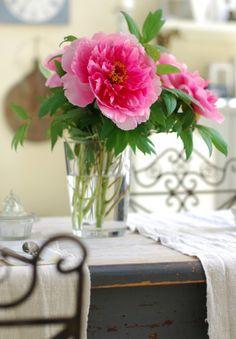 Flores Em Festa!por Depósito Santa Mariah
