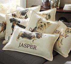Personalized Dog Pillow Covers #potterybarn