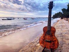Order your custom ukulele at Ukeshop Barcelona Online Store Ukelele, Guitar, Ukulele Pictures, Barcelona, Music Instruments, Store, Get Well Soon, Musical Instruments, Larger
