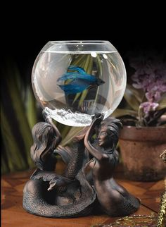 While googling random topics to pass the time, I came across a couple of interesting sites that the aquarium enthusiast might enjoy. The first is Tropical Fish Decor, a store where you can order unusual, handmade aquarium decorations. All products. Betta Fish Tank, Beta Fish, Aquarium Fish Tank, Cool Fish Tanks, Amazing Aquariums, Aquarium Decorations, Aquarium Ideas, Siamese Fighting Fish, Tanked Aquariums