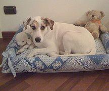 Free patterns for dog beds, including snuggle bag