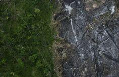 Una de las zonas que más sufre los efectos de la deforestación es el Amazonas. Esta imagen corresponde al estado de Pará, en Brasil, donde se realizan talas y quemas de árboles, en muchos casos ilegales. (Foto de Ricardo Moraes/Reuters).