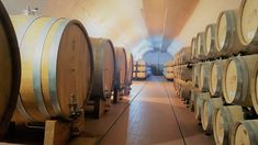 The of Cotnari: Vine, Volume, and Vision - Wine & Dine Today Wines, Houses