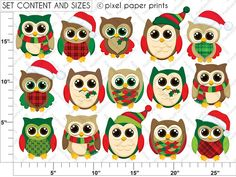 Búhos Navideños Set de Clip Art y Papeles por pixelpaperprints