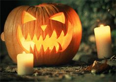 New trending GIF on Giphy. pumpkin halloween jack o lantern pumpkins. Follow Me CooliPhone6Case on Twitter Facebook Google Instagram LinkedIn Blogger Tumblr Youtube