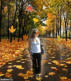 Image result for NATURE  GIF FRAMES FOR PICTURES