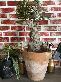 Comment faire la mandragore Harry Potter : tuto facile Ficus, Roman Photo, Anniversaire Harry Potter, Planter Pots, Surprise Birthday, How To Make, Home Made, Figs, Fig