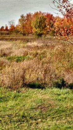 Fall ride in marshfield wi